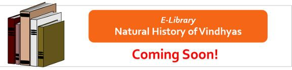 E-library-Coming Soon