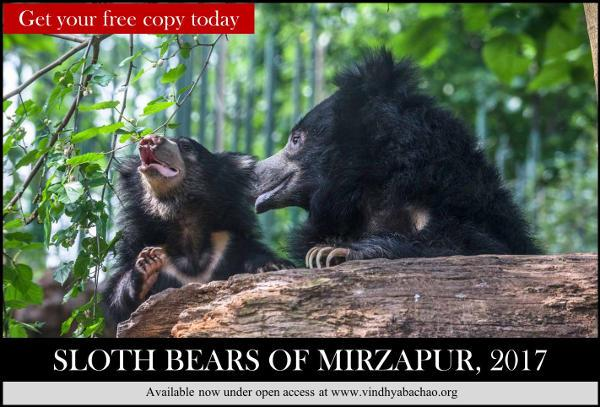 Sloth Bear Report Mirzapur-Link